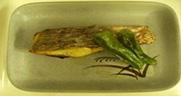 栄養部_12焼き魚